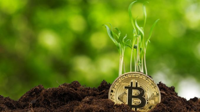 Investors Need to Accept the Trajectory and Level of Volatility in Bitcoin, Says SkyBridge Capital Founder